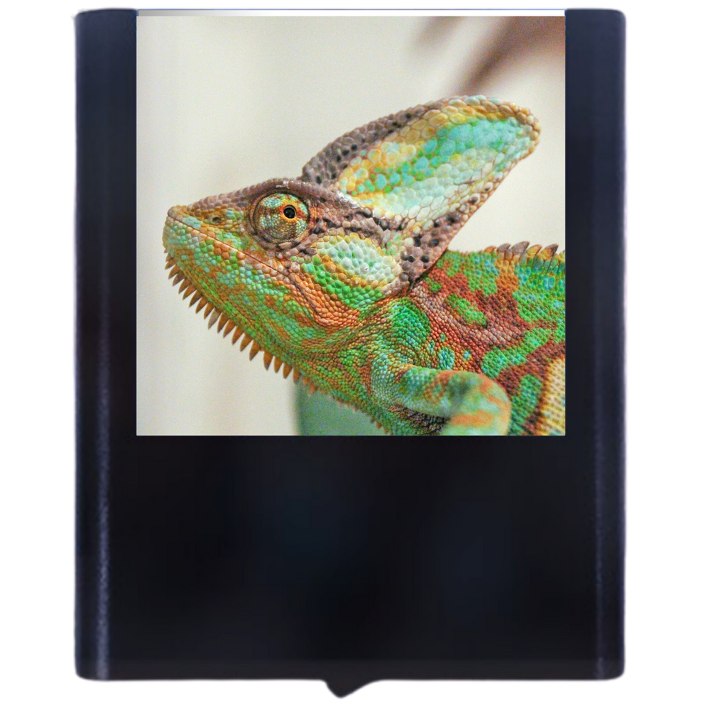 Load image into Gallery viewer, Chameleon-3