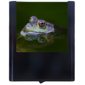 Load image into Gallery viewer, Frog-3
