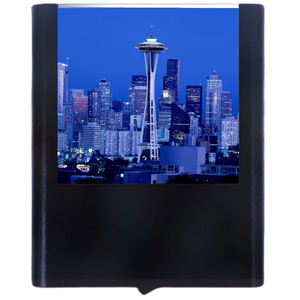 Load image into Gallery viewer, Space Needle