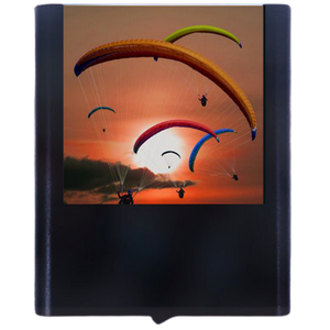 Load image into Gallery viewer, Paraglider