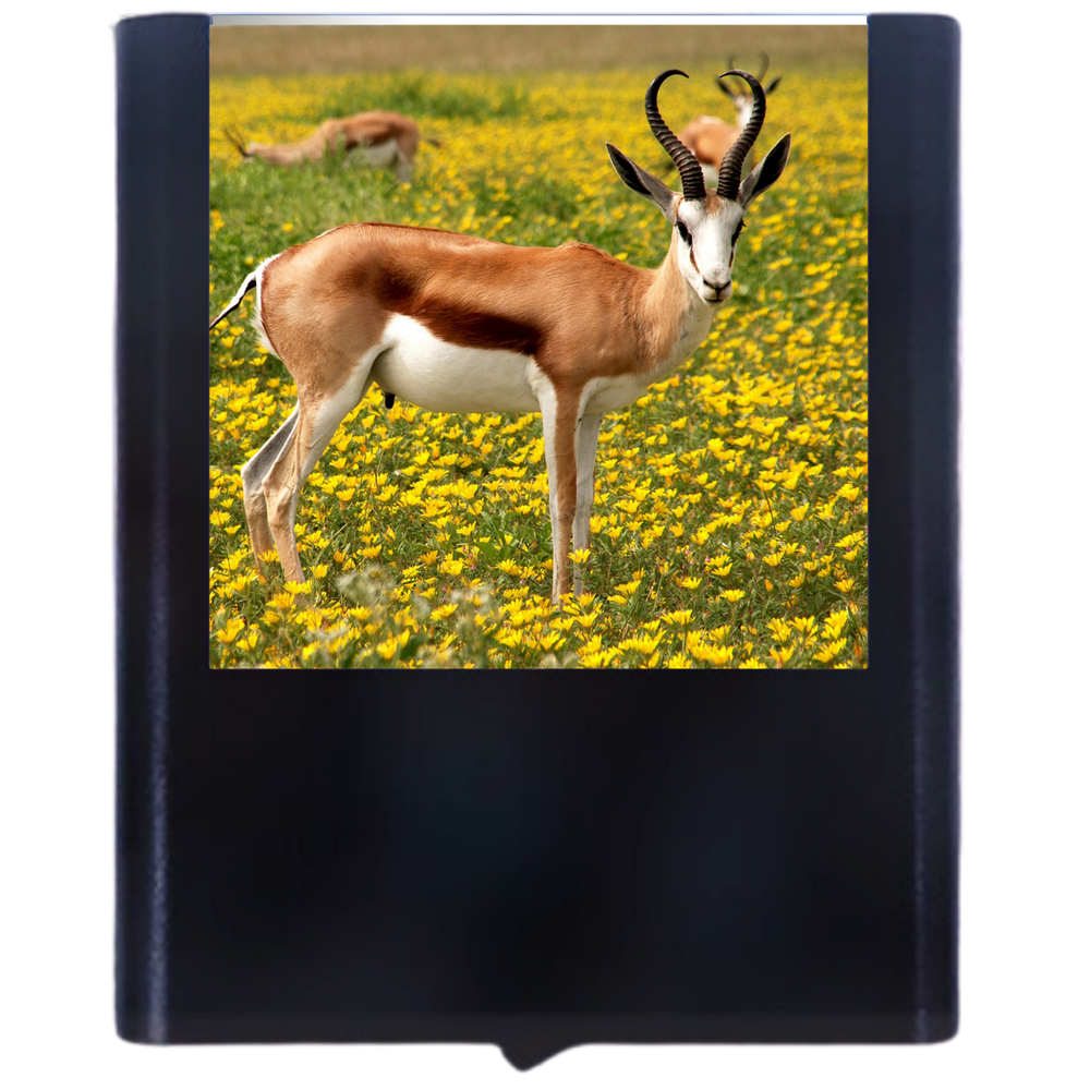 Load image into Gallery viewer, Antelope