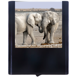 Load image into Gallery viewer, Elephant-1