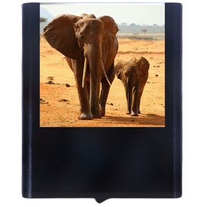 Load image into Gallery viewer, Elephant-2