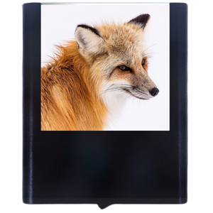 Load image into Gallery viewer, Fox