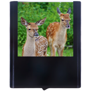 Load image into Gallery viewer, Deer-3