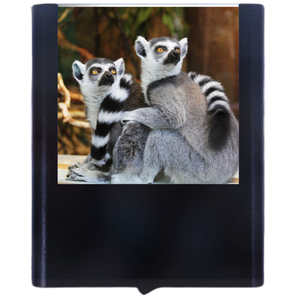 Load image into Gallery viewer, Lemur
