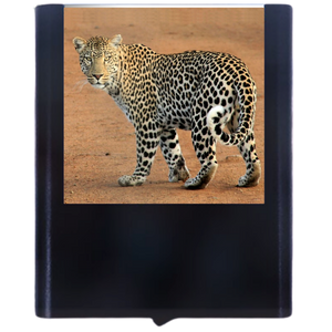 Load image into Gallery viewer, Leopard-2