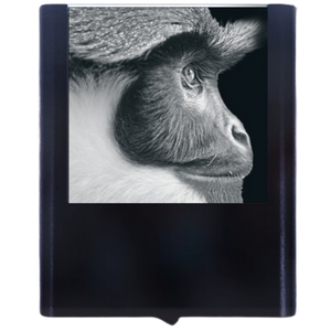 Load image into Gallery viewer, Night Light Monkey