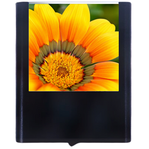 Load image into Gallery viewer, Flower-4