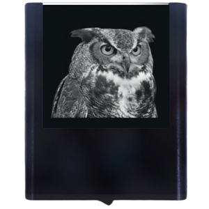 Night Light Owl 1