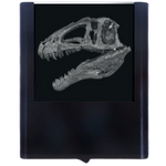 Night Light Dinoskull