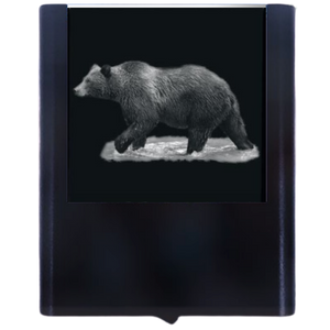 Load image into Gallery viewer, Night Light Bear 1