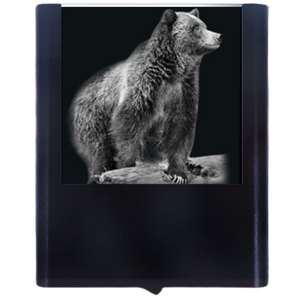 Load image into Gallery viewer, Night Light Bear 2