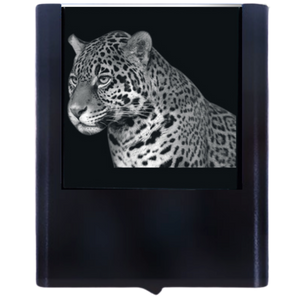 Load image into Gallery viewer, Night Light Jaguar