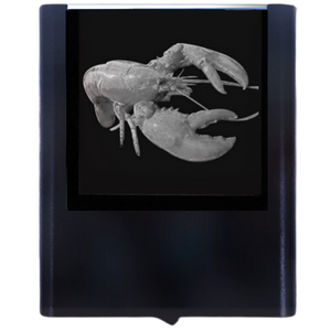 Load image into Gallery viewer, Night Light Lobster