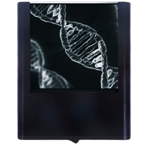Night Light DNA