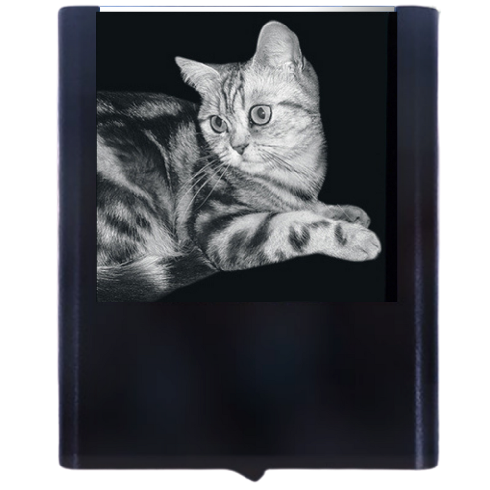Load image into Gallery viewer, Night Light British Short Hair Cat
