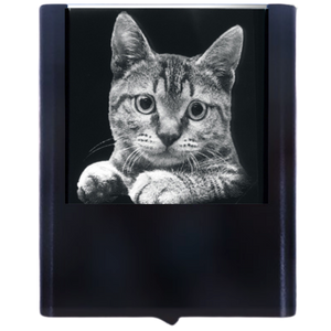 Load image into Gallery viewer, Night Light Cat 3