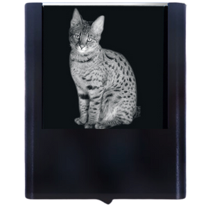 Night Light Savannah Cat