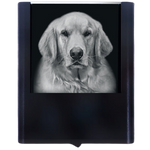 Night Light Golden Retriever