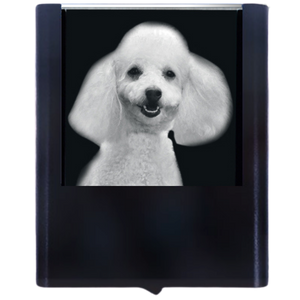 Night Light Poodle 2
