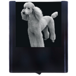 Night Light Standard Poodle 1