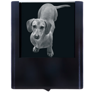 Load image into Gallery viewer, Night Light Dachshund 2