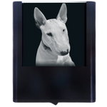Night Light Bull Terrier