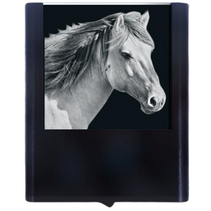 Load image into Gallery viewer, Night Light Horse 2