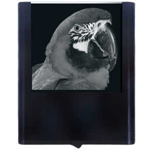Load image into Gallery viewer, Night Light Parrot