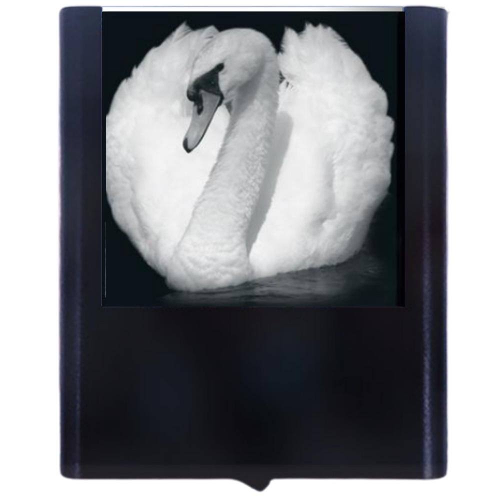 Load image into Gallery viewer, Night Light Swan