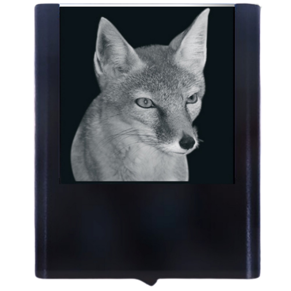 Load image into Gallery viewer, Night Light Fox