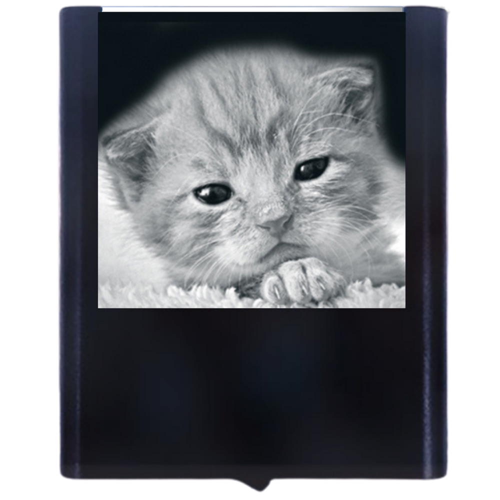 Load image into Gallery viewer, Night Light Kitten 1