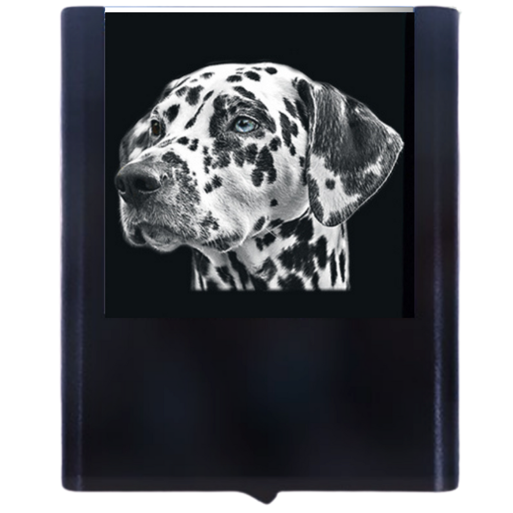 Night Light Dalmation