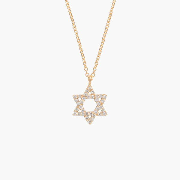 Little Wolf Diamond Star of David Necklace