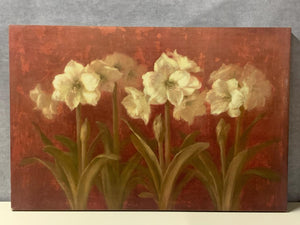 White Amaryllis on Red Background Canvas Wall Art - Macomb County ReStores
