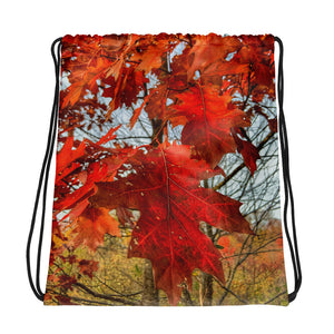 Autumn In West Virginia Drawstring Bag