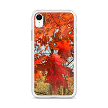 Load image into Gallery viewer, Autumn In West Virginia Liquid Glitter IPhone Case