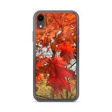 Load image into Gallery viewer, Autumn in West Virginia iPhone Case