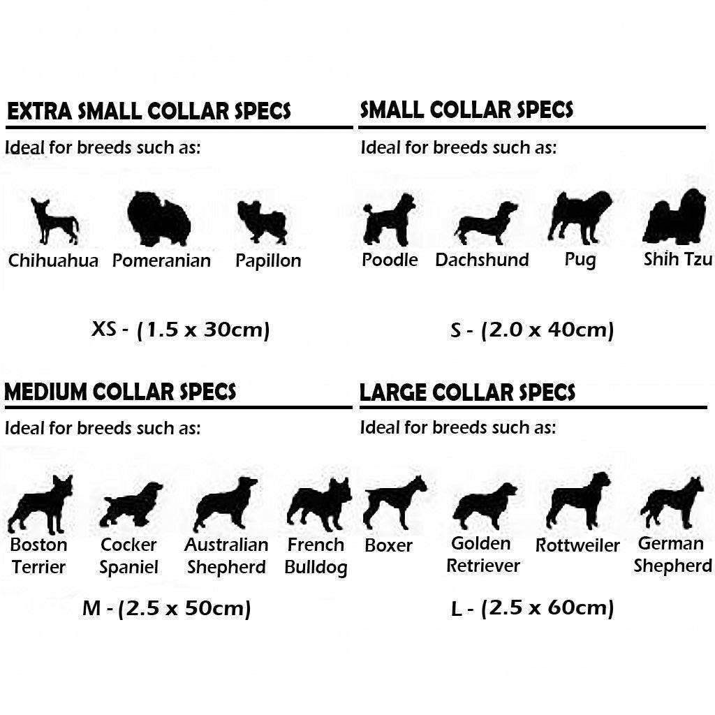 Terrier Breeds Chart Other Health Most Popular Dog Breeds And