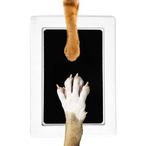Paw Print Pad - Keep a memory of Your Pet!