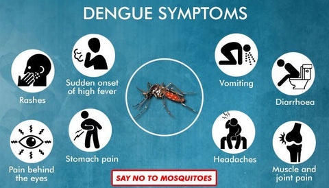 Symptoms of Dengue
