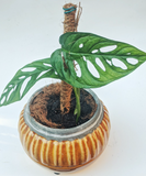 Mini Coconut Coir Climbing Pole