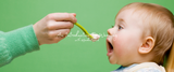 A Introduction to Weaning by Stacey Zimmels
