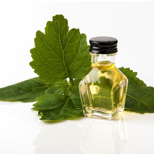 Patchouli/Patchouli Oil