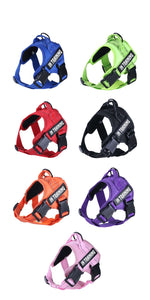Image description: harnesses with personalized name tag in different colors: starting with purple, green, red, black, orange, purple and pink