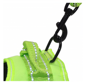 CANINX Personalized Harness