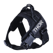 Load image into Gallery viewer, Image description: black harness with personalized name tag