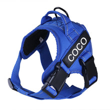 Load image into Gallery viewer, Image description: blue harness with personalized name tag