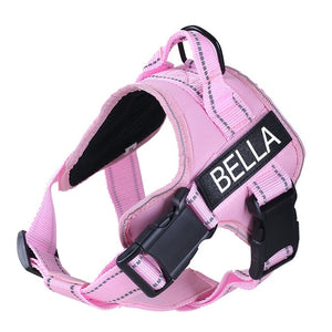 Image description: pink harness with personalized name tag